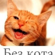 Без кота и жизнь не та! group on My World