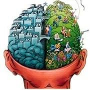 Покорми мозг © group on My World