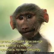 Алла Костюченко on My World.