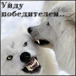 Дмитрий Рыбак on My World.