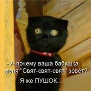 Ирина Мокина on My World.