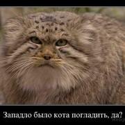Сергей Кузнецов on My World.